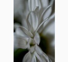 Daisy - Chrysanthemum Unisex T-Shirt