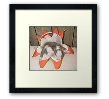 Two Peas In A Pod Framed Print