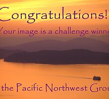 Pacific Northwest challenge winner banner by Robin Nellist