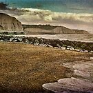 The Beach and Cliffs at Rottingdean by Chris Lord