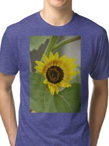 Sunflower - macro Tri-blend T-Shirt