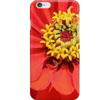 Zinnia iPhone Case/Skin