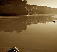 Anglesea Cliffs by Paul Moore