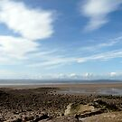 Heysham beach, Lancashire by Lissywitch