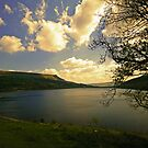 View From Snake Pass by WOBBLYMOL
