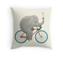 Ride colour option Throw Pillow