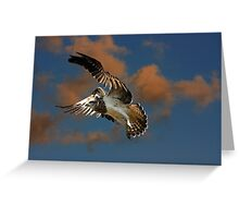 Flying Blind Greeting Card