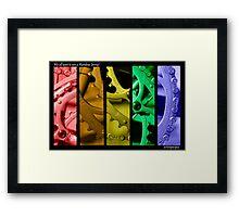 Rainbow Jersey Framed Print