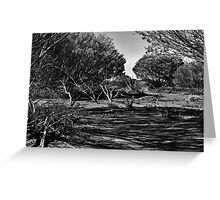 OutBack! Greeting Card
