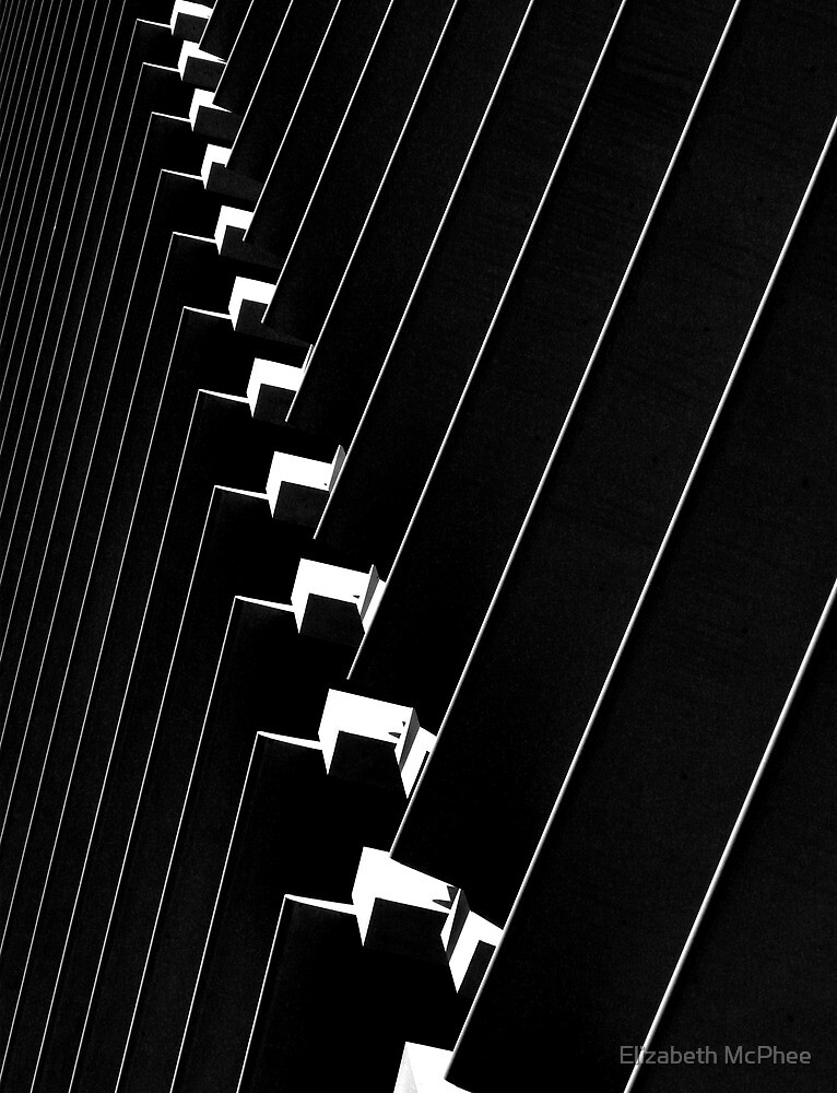 Black and white by Elizabeth McPhee