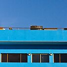 blue by Front Quarter Window