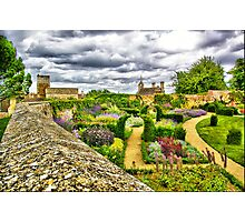 Down the Garden Path Photographic Print