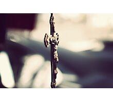Italian Rosary Photographic Print