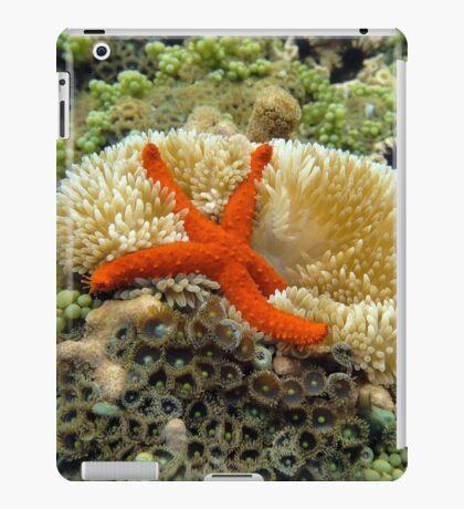 Underwater comet sea star on a sun anemone iPad Case/Skin
