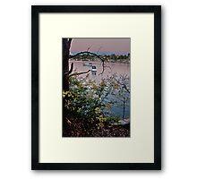 Longueville Reserve Framed Print