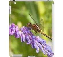 Tiny Dragon iPad Case/Skin