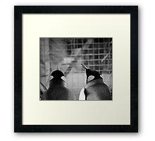 Penguins Day Out Framed Print