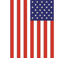 American Flag, Portrait, USA, Stars & Stripes, America, Pure & simple by TOM HILL - Designer