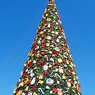 Giant Christmas Tree in Palawan, Philippines by walterericsy