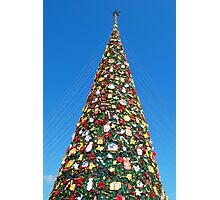 Giant Christmas Tree in Palawan, Philippines Photographic Print