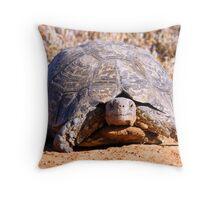 Leopard Tortoise Throw Pillow
