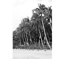 Tamar beach in Palawan Photographic Print