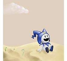 Jack Frost in the Desert Photographic Print