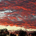 dalhousie springs sunrise by princesstea