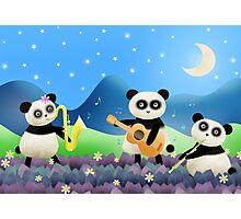 Panda Band Photographic Print