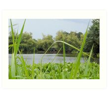 Ninoy Aquino Park and Wildlife Nature Center Lagoon's Cottage Art Print