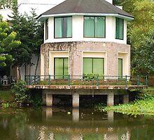 Ninoy Aquino Park and Wildlife Nature Center Lagoon Cottage by walterericsy