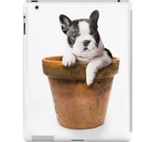Potted Pooch iPad Case/Skin