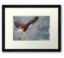 Fish Eagle - Malawi Framed Print