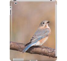 Blue Bird iPad Case/Skin