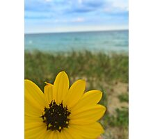 a flower by the sea Photographic Print