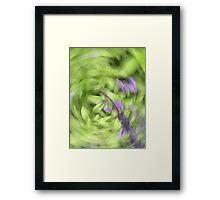 Garden bliss salvia Framed Print