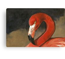 Orange Caribbean Flamingo Canvas Print