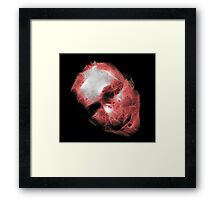 Cosmetic Surgery Does Not Change My Mind Framed Print
