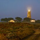 Piedras Blancas Light Station by Ann J. Sagel
