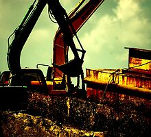 Metal cranes in their habitat by Amanda Huggins