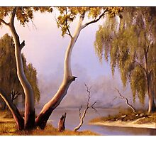 Willow Creek Photographic Print