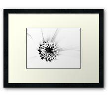 White.... Framed Print