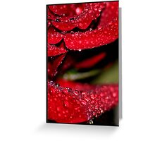 Wet Rose Cross Section Greeting Card