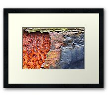 Oxidized infection Framed Print