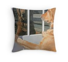 Dog reflection in the window color Throw Pillow