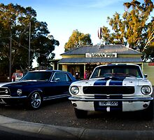 Mustangs at the Logan Pub by Greg Carrick