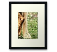 Natural Blond Pony Tail Framed Print