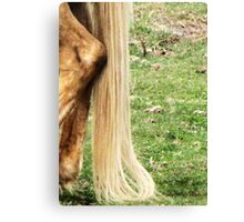 Natural Blond Pony Tail Canvas Print
