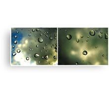through glass Canvas Print