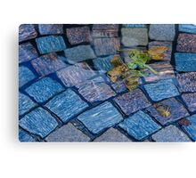 Cobblestones and Leaves Canvas Print
